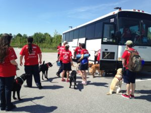 Group Bus Tour with Dogs